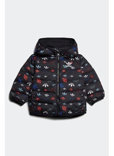 adidas Adidas Bebek Günlük Kaban Down Jacket Gd2886 Renkli